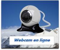 Si l'image n'apparaît pas au bout de quelques secondes, c'est qu'il y a un problème technique avec la webcam!